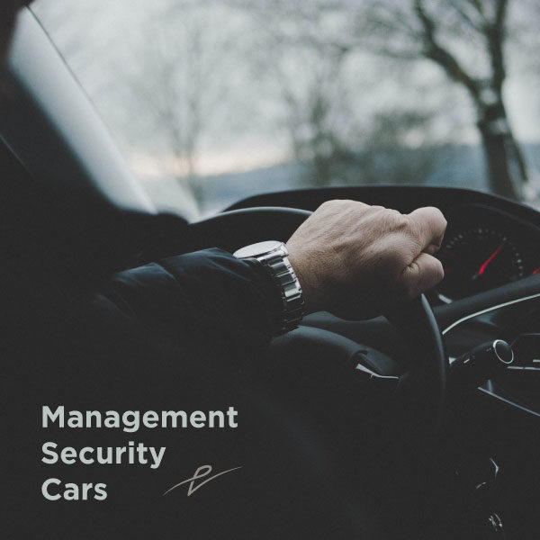 management, security, cars, vallone, bari, Pasquale Vallone Group